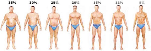 body-fat-levels-men1-1