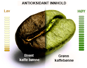 green-coffee-infographic