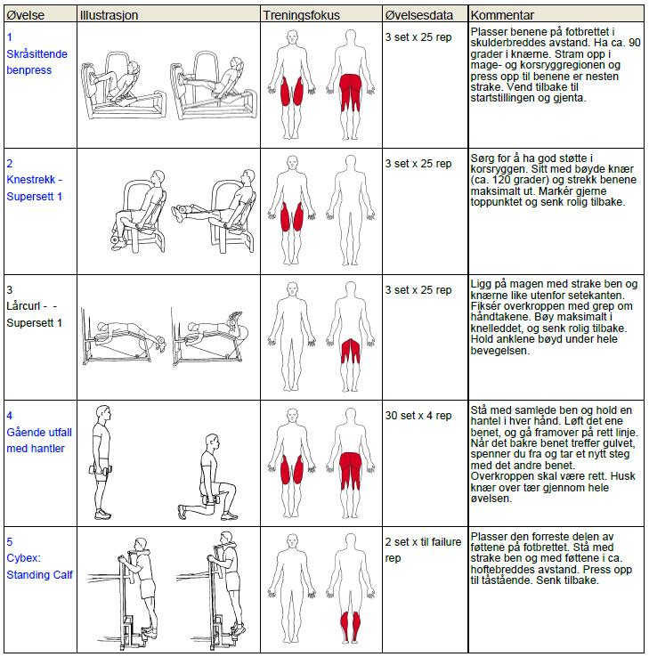 treningsprogram for mage