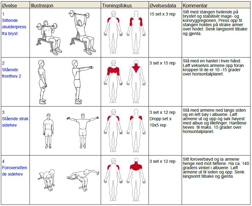 treningsprogram armer og skuldre