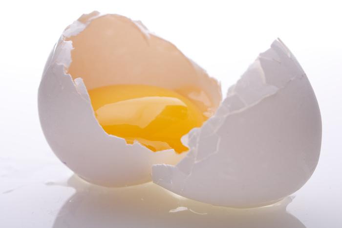 knust-egg