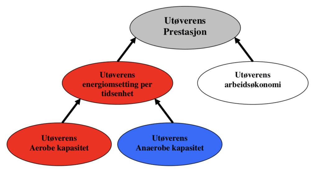 Hovedfaktorer som bestemmer utøverens prestasjoner i vanlige utholdenhetsidretter.