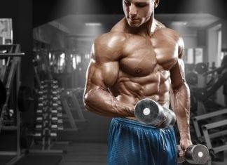 mTOR biceps