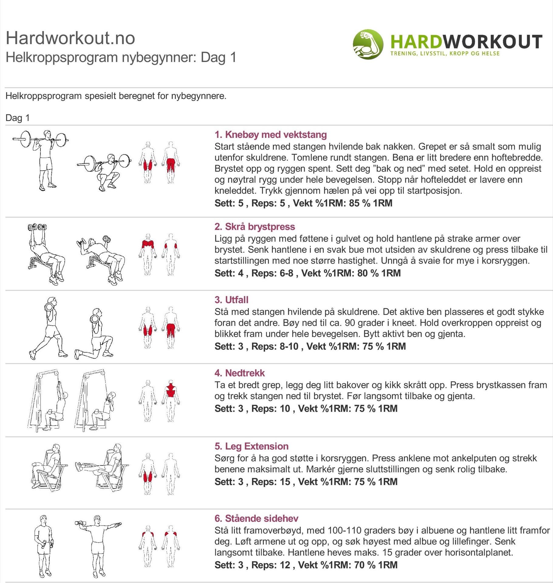 treningsprogram hele kroppen