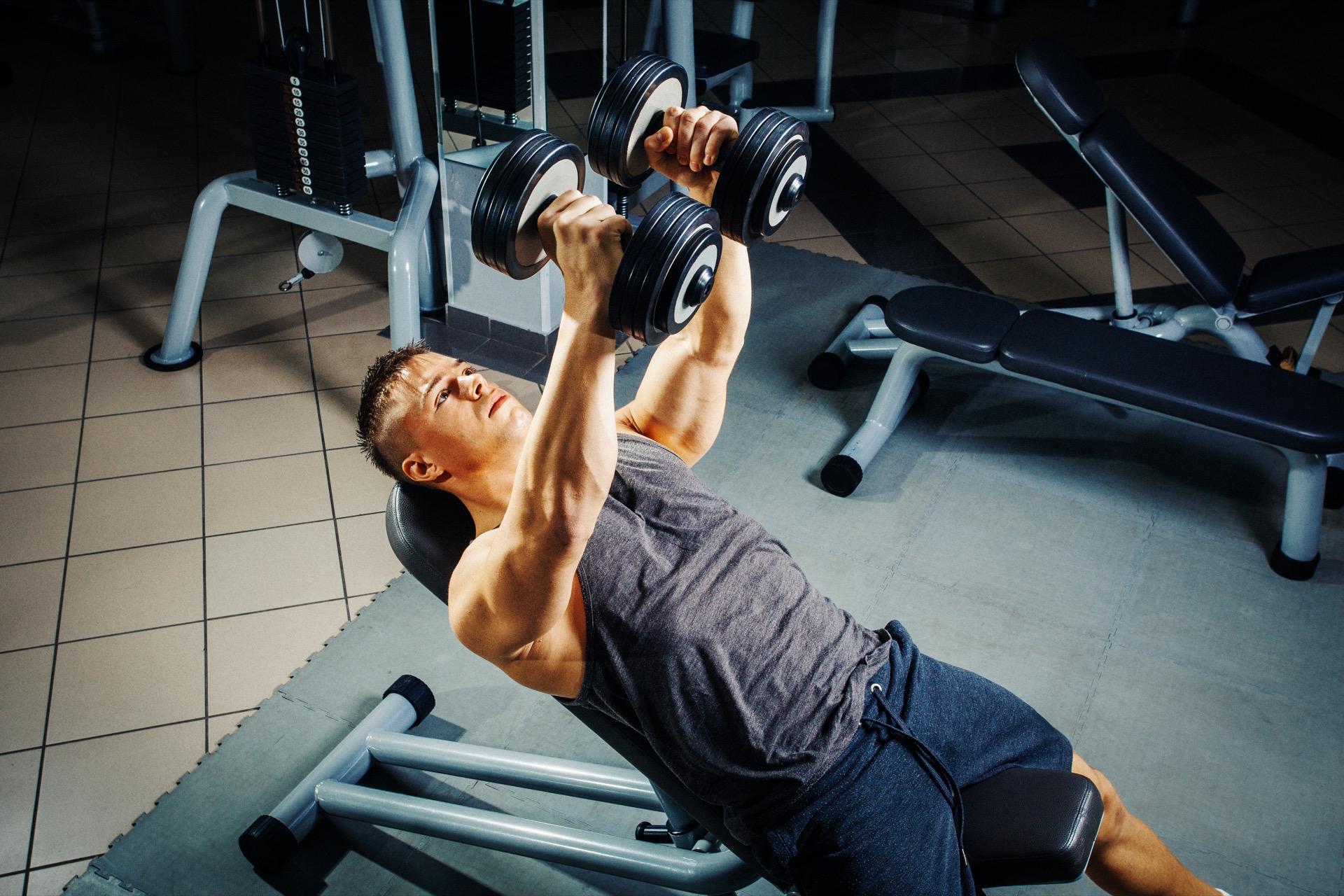 muskelvekst og hypertrofi