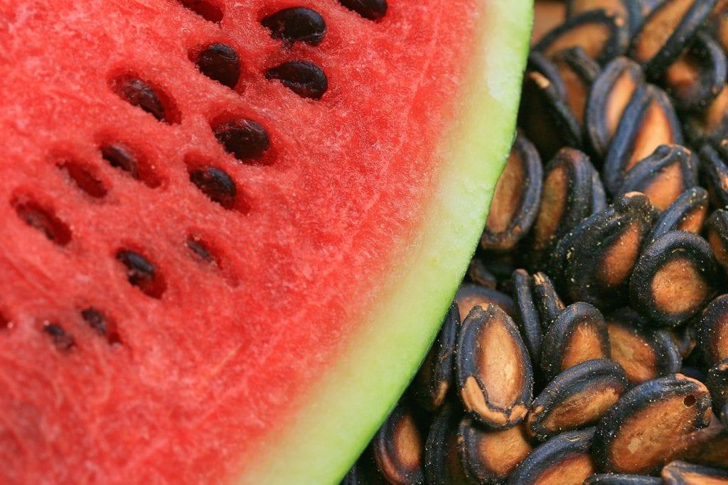 vannmelon frø sunt