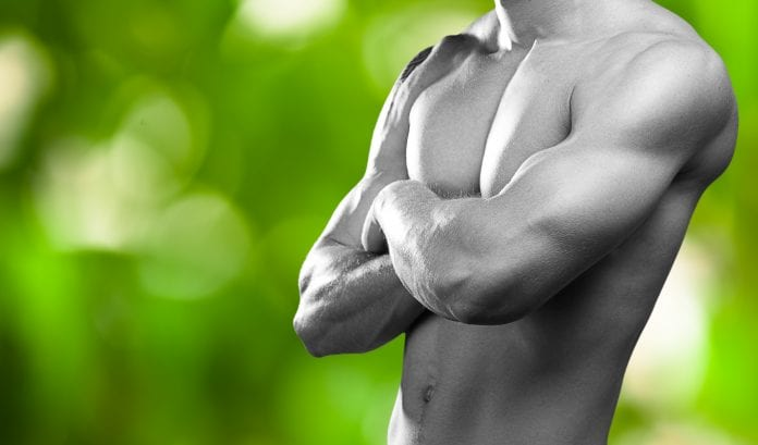 ketodiett muskelvekst