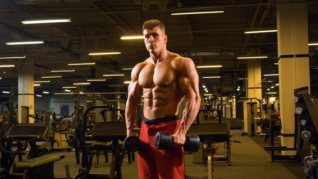 proteiner og styrketrening