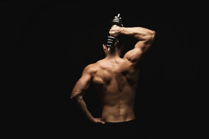 trening rygg