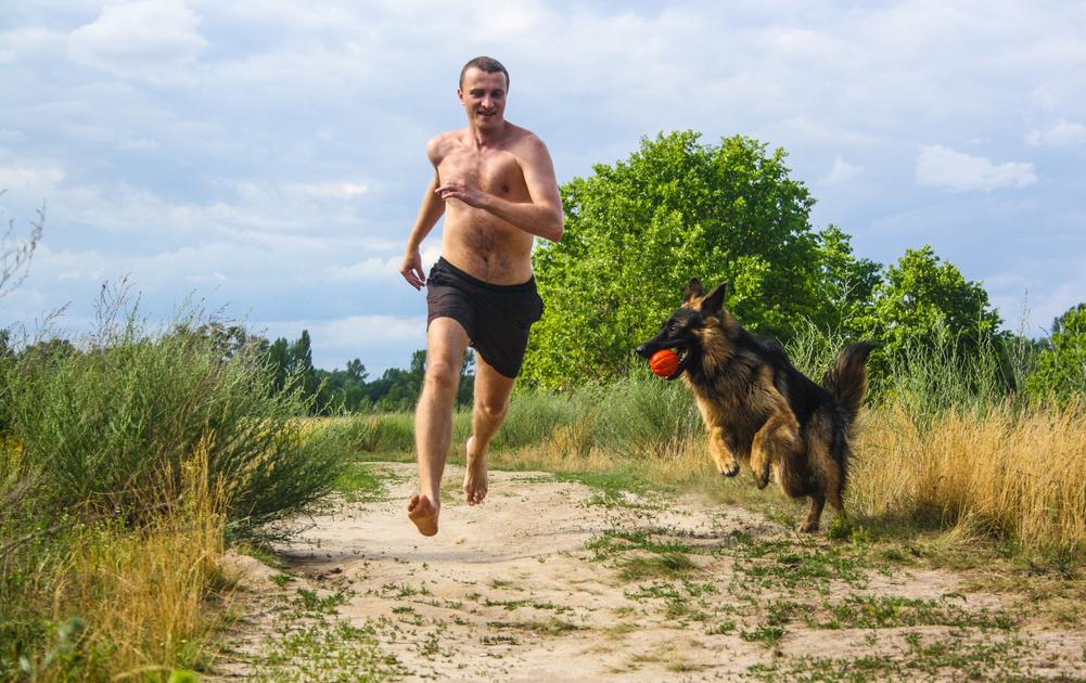 trene med hund
