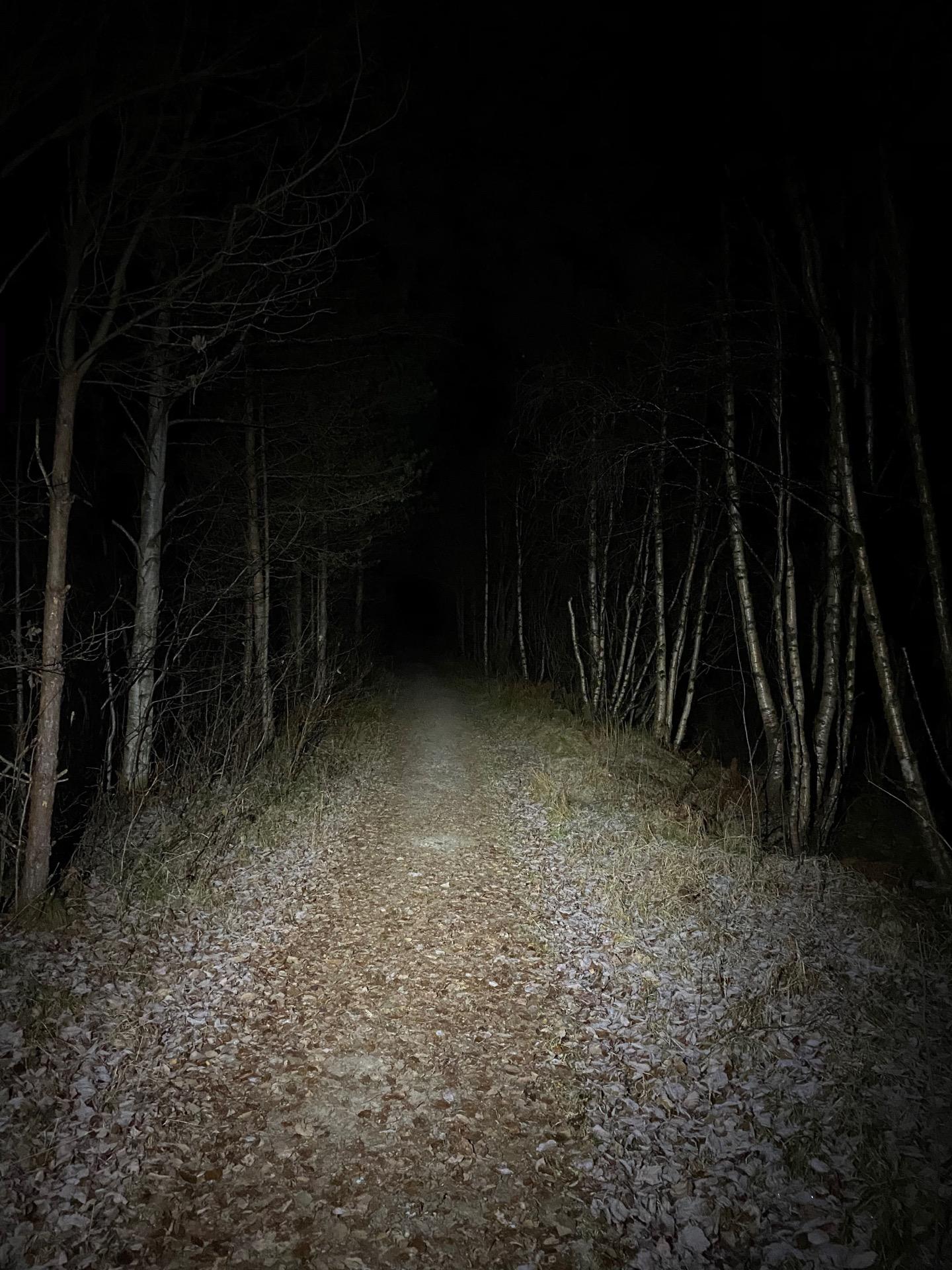 Silva Trail Speed 4XT hodelykt